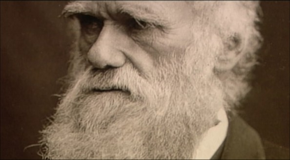 Darwin (dok. cncah.org)