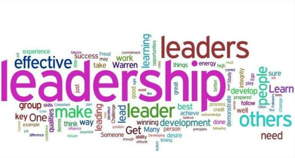 Leadership Domain (dok. lawlex.org)