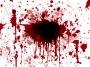 Blood (dok layoutsparksdotcom)